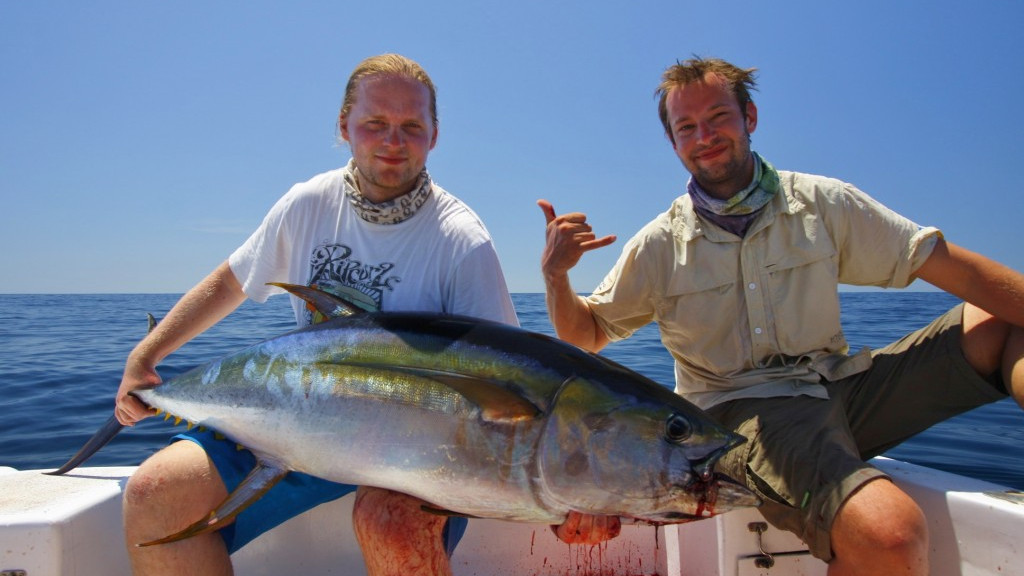 panama inshore and offshore fishing