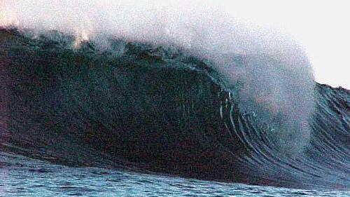 panama surf nestles throw
