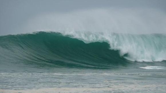 panama surf nestles